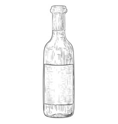 bottle wine with blank label hand drawn sketch vector image