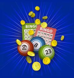 flat bingo lottery balls tickets money vector image