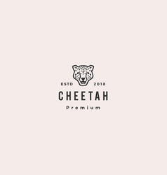 panther cheetah head logo icon vector image