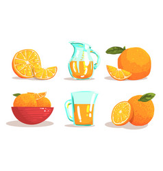 ripe sliced oranges and jug fresh juice set vector image