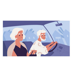 side view old gray-haired couple inside car vector image