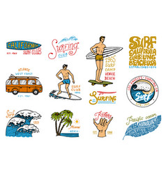 surf badge and wave palm tree and ocean tropics vector image