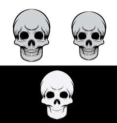 Black and Gray Skull vector image vector image