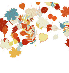 Autumn leaves falling and spinning on white vector