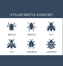 Beetle icons vector