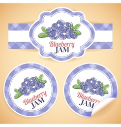 Blueberry jam labels vector