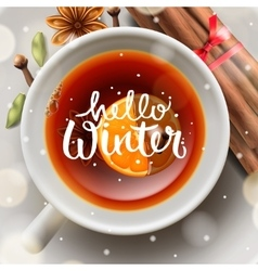 hello winter Christmas tea with spices vector image