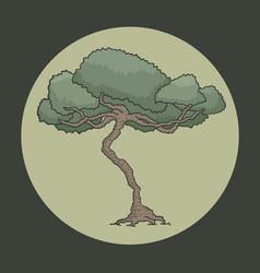 oak symbol vector image