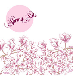 spring sakura and magnolia background vector image