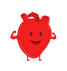 Strong healthy happy heart character vector
