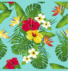 tropic bloe vector image