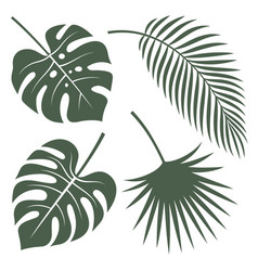 tropical leaves 001 vector image