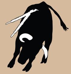 Bull in korida vector