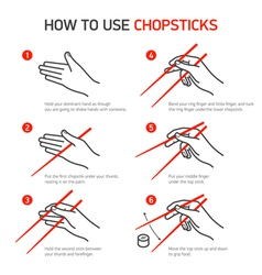 How to use chopsticks guidance vector