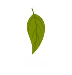 Dogwood leaf icon flat style vector