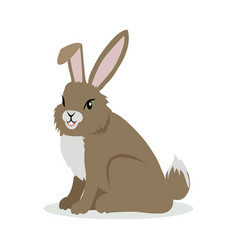 Hare cartoon in flat design vector