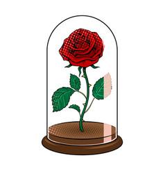 Rose under glass cap pop art vector