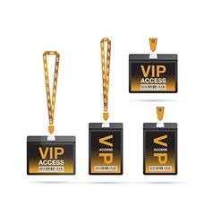 vip access lanyards vector image