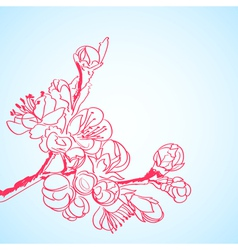 background with red sakura flowers vector image vector image