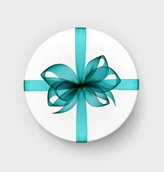 white round box with blue bow and ribbon vector image