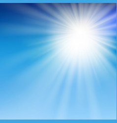 summer sun light in the blue sky vector image vector image