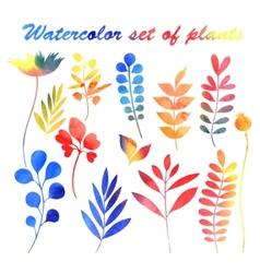 watercolor set of plants vector image
