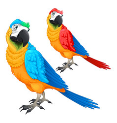 Funny parrots in two different colors vector