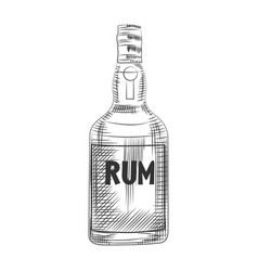 Glass rum bottle isolated on white background vector