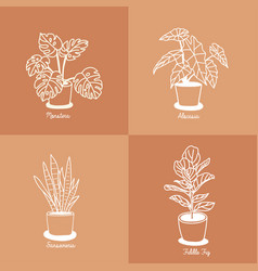 hand drawn house plants in pots vector image