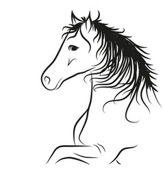 horse drawn outline in black coloring vector image