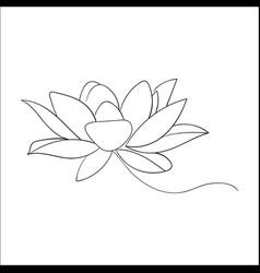 lotos flower vector image