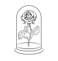 Rose under glass cap coloring book vector