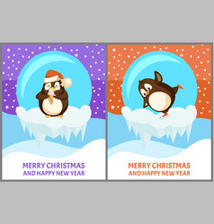 set papercard snow-globe with penguin vector image