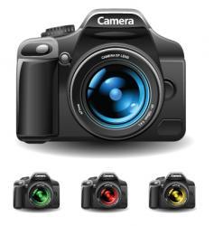photo and camera vector image vector image