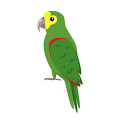 Amazon parrot icon in flat style vector