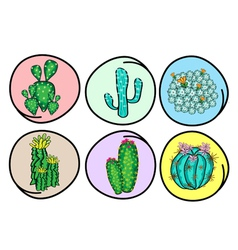 A Set of Cactus and Cactus Flowers vector image