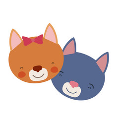 Colorful caricature faces of cat couple animal vector