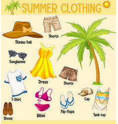 Summer collection clothing and accessories vector