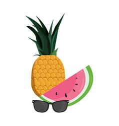 Tropical pineapple watermelon sunglasses vector