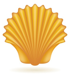 shell vector image vector image