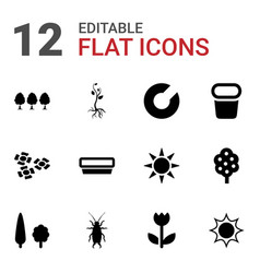 12 spring icons vector image