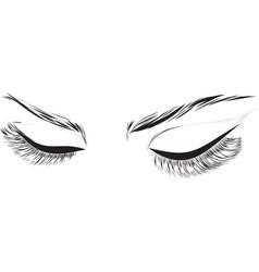 closed female eyes drawing long eyelashes vector image