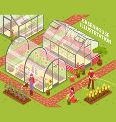 Colored greenhouse composition vector