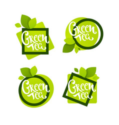 geometrical green tea labels logo emblems and vector image