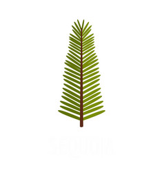 sequoia leaf icon flat style vector image