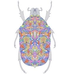 colorful beetle on white background vector image vector image