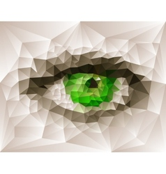 Female eye created from polygons vector image