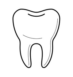 icons of tooth in thin line style vector image vector image