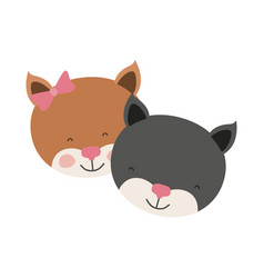 Colorful caricature faces of kitten couple animal vector