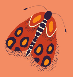 colorful hand drawn moth stylized vector image